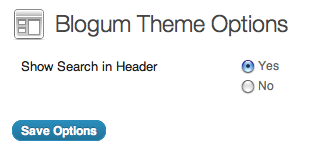 blogum-theme-options