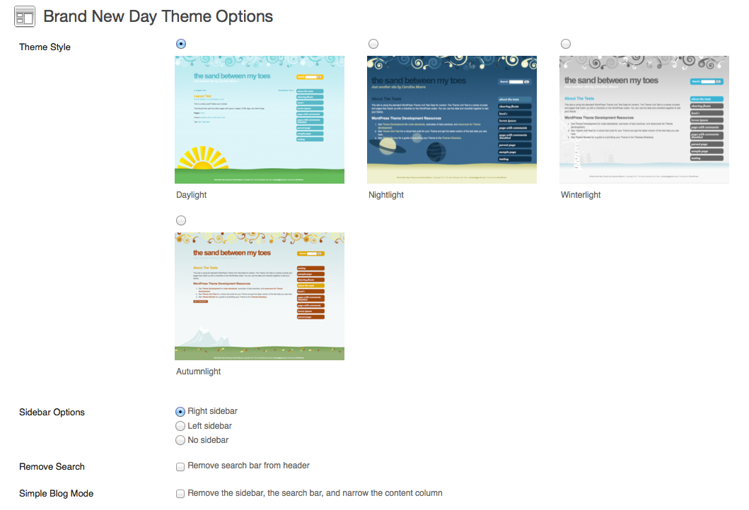brand-new-day-theme-options