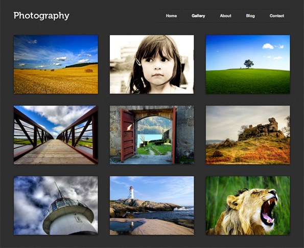 Photography is a beautiful, clean, handcrafted theme for amateur and ...