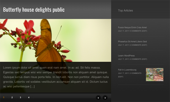 Nuntius Featured Slider and Sidebar
