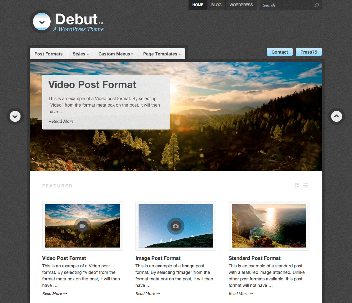 Debut theme wordpress themes for blogs at for What wordpress template is this