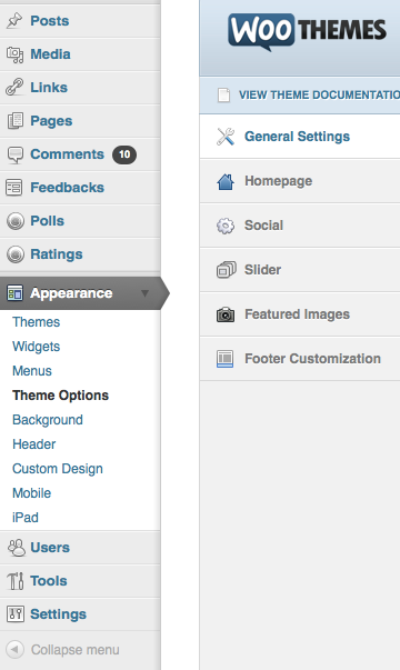 "Navigate to ""Appearance > Theme Options""."