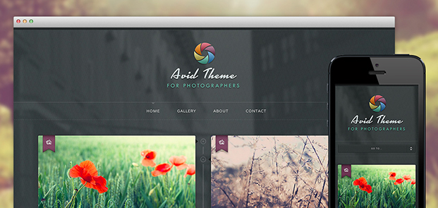 Avid theme screenshots