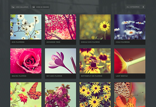 Avid gallery page screenshot