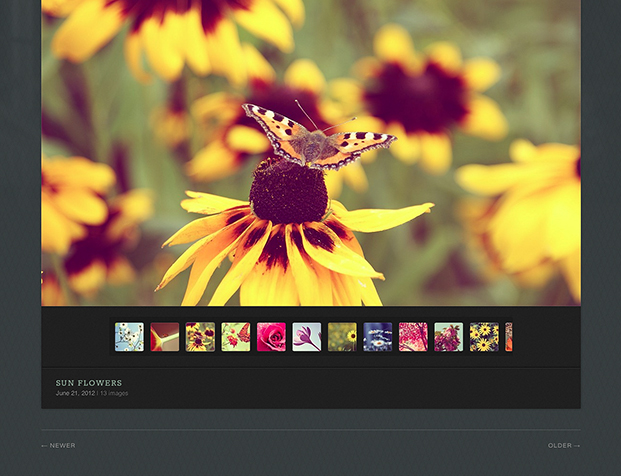 Screenshot of an Avid gallery