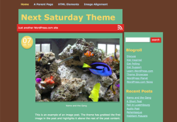 The Next Saturday Theme