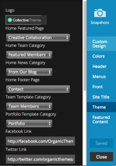 Theme options in customizer.
