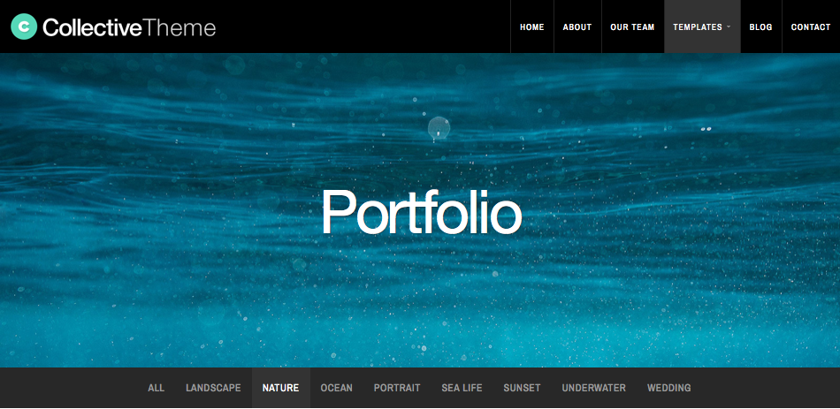Portfolio template category filter menu.