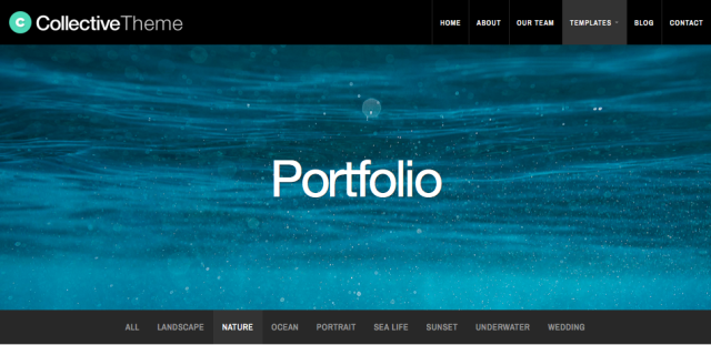 Portfolio template category filter menu.