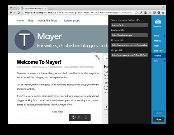 Mayer Theme Customizer Demo
