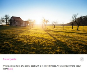 Poly: Featured Image
