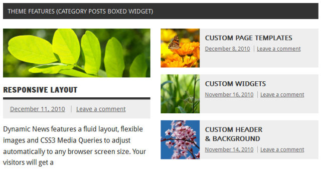 category-posts-boxed-widget