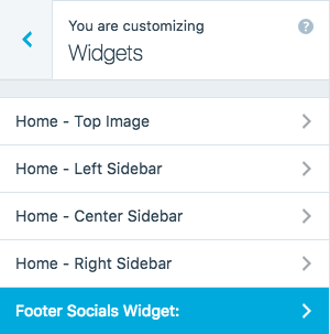Footer Social