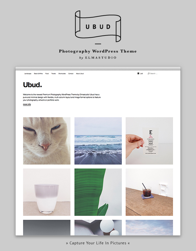 Ubud Premium WordPress Theme
