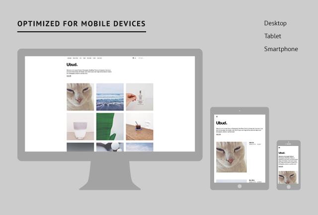 Ubud responsive Design
