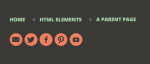 Social Media icons in the footer area