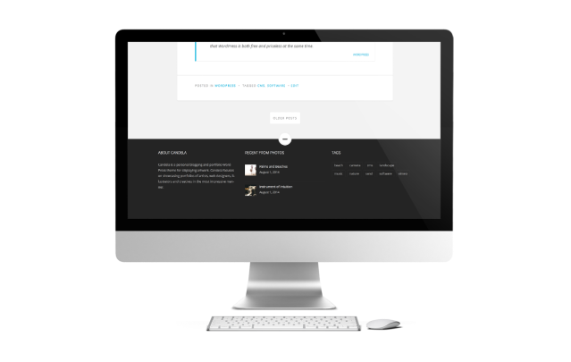 Candela WordPress Theme Widget Areas