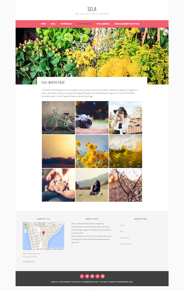 Sela - Full-Width Page Template
