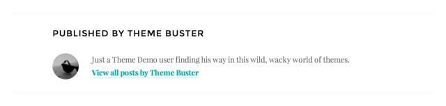 Show author bio on single posts.