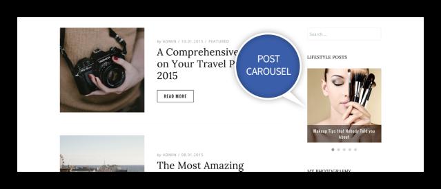 Post Carousel Widget Dicot WordPress Theme