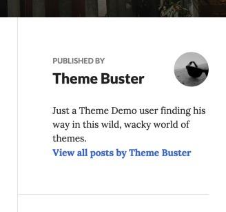 Show author bio on single posts