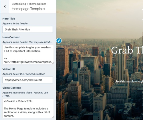 theme-options-homepage-template