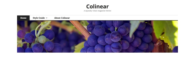 Colinear: Custom Header