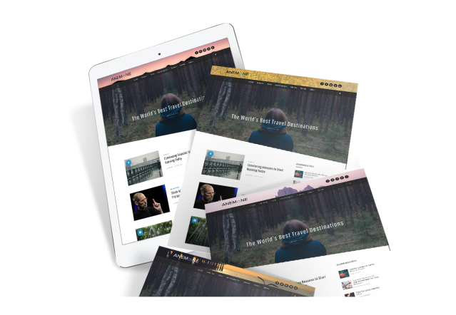 custom-header-anemone-wordpress-theme