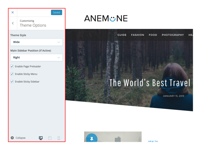 theme-options-anemone-wordpress-theme