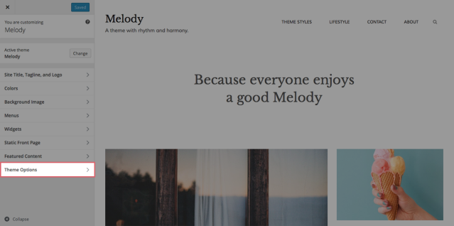 Melody Customizer Theme Options closed
