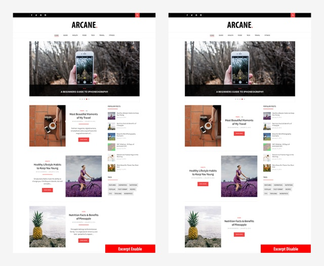 excerpt-option-arcane-magazine-theme