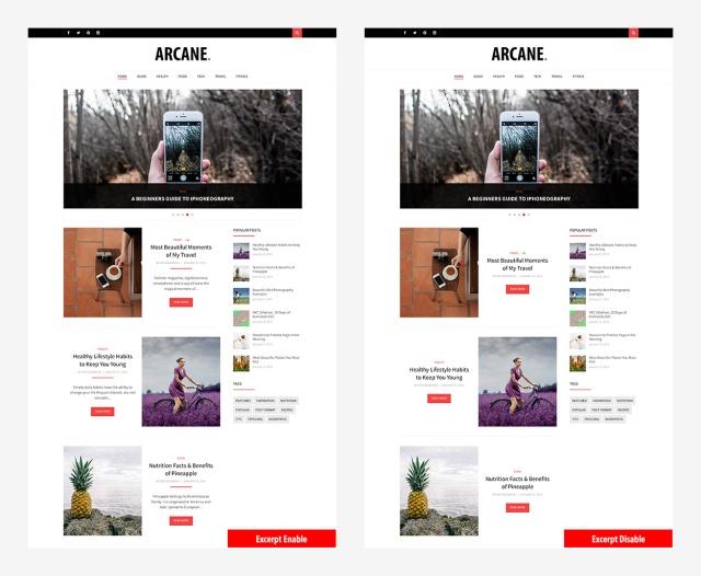 excerpt-option-arcane-magazine-theme