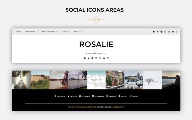 Rosalie social icons