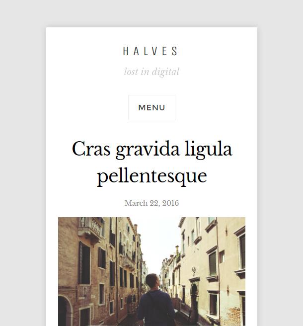 Halves Theme Mobile Responsive