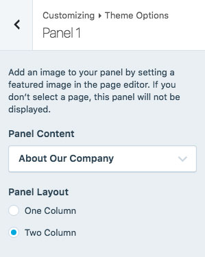 lodestar-customizer-panel1-