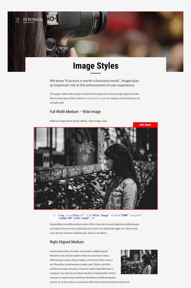 image-styles-perennial-theme