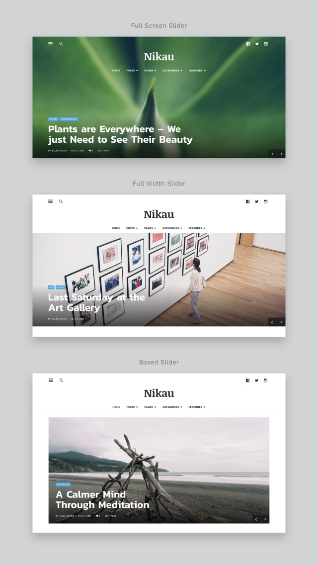 Nikau Magazine WordPress Theme Featured Posts Slider